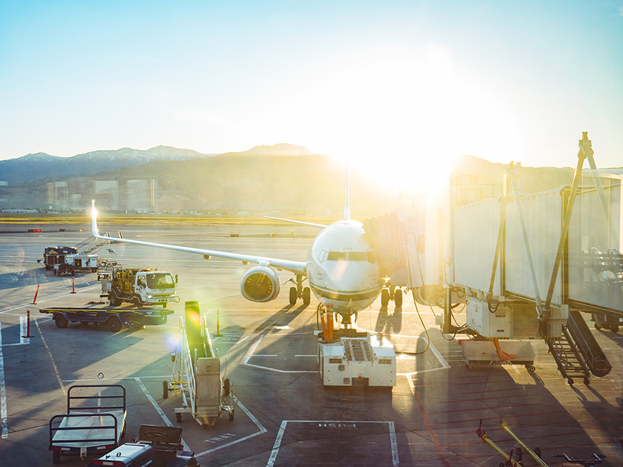 How IQF Meals Can Improve Your Airline's Culinary Offerings