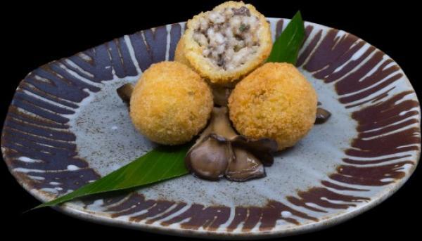 wild mushroom arancini1